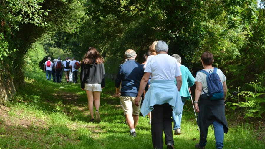 Community-builders in COVID-19: Graham Heights and Scot Haven Walking Group