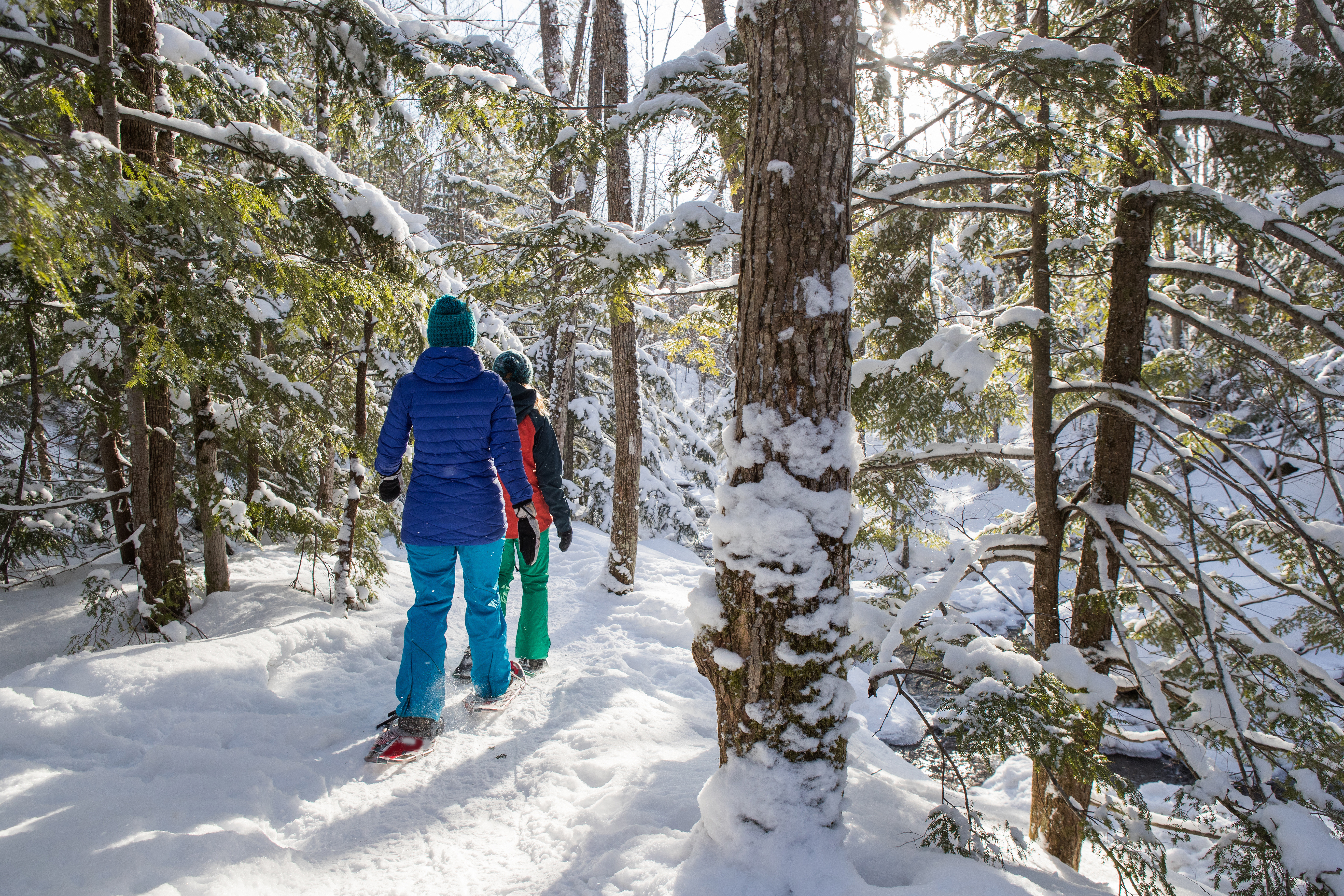Snowshoeing in winter