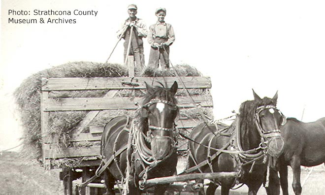 Historical black and white photo of early settlers transporting hay in a carriage