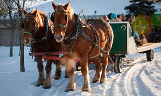 People riding a horse-drawn carriage in a winter festival.