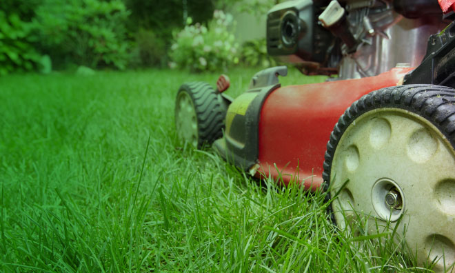 Lawnbusters is a great opportunity to help your neighbours