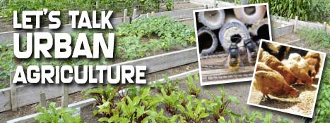 County ready to take action on urban agriculture