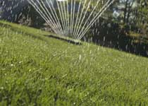 ph-UT-sprinkler-210x150.jpg