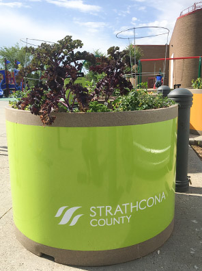 Green planter filled with kale, Kinsmen Leisure Centre in the backgound