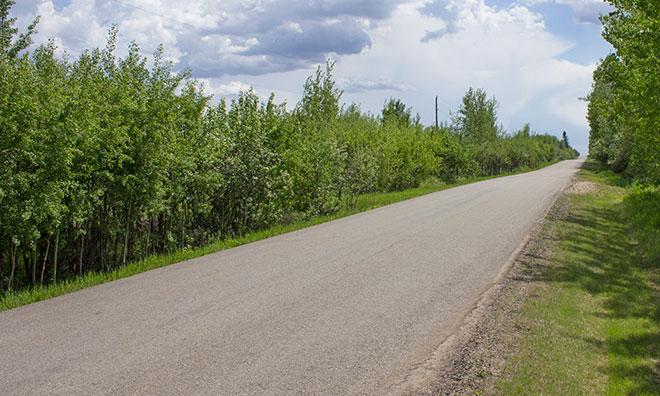 Rural road in Strathcona County.