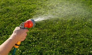 Image of a hand holding a water sprayer, spraying the lawn.