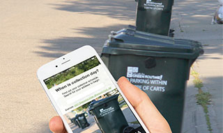 Someone holding phone with waste app open in front of organic carts aligned on street for collection